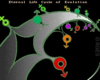 FED: Eternal-Life-Cycle-of-Evolution-RGES