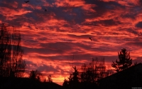 Collection\Msft\Landscapes: Red-Sky-at-Dawn