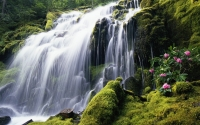 Collection\Msft\Landscapes: Waterfall-10