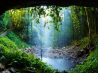 Rainforest: Lush-rainforest-towers-Crystal-Shower-Falls-2